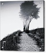 End Of A Road Acrylic Print