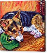 End Of The Day - Pembroke Welsh Corgi Acrylic Print