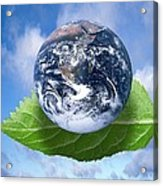 Environmental Issues, Conceptual Artwork Acrylic Print