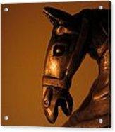 Equus Acrylic Print
