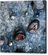 Eroded Rock With Dried Leaves Acrylic Print