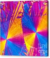Erythromycin Crystal Acrylic Print