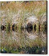 Escape Hatches Acrylic Print