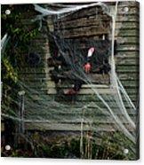 Escaping The Web Acrylic Print