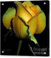 Eternal Gift Acrylic Print