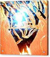 Eternal Torch Acrylic Print by Tyler Schmeling