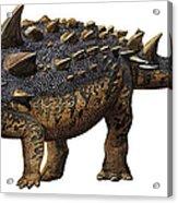 Euoplocephalus Tutus, A Prehistoric Era Acrylic Print