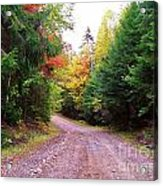 Even Cloudy Days Sing In The Adirondacks 10 Acrylic Print