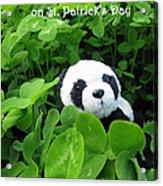 Even Pandas Are Irish On St. Patrick's Day Acrylic Print