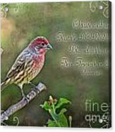 Evening Finch Greeting Card With Verse Acrylic Print