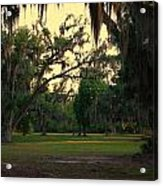 Evening In The Mossy Oaks Acrylic Print