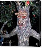 Evil Tree In Oz Acrylic Print