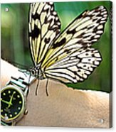 Excuse Me What Time Is It Now Acrylic Print