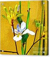 Exotic Flowers Acrylic Print