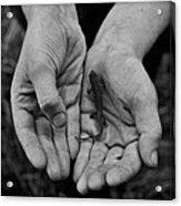 Explorer's Hands Acrylic Print