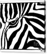 Eye Of The Zebra Acrylic Print
