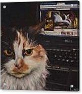 Facebook Cat Acrylic Print