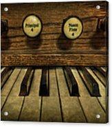 Facing The Music Acrylic Print by Evelina Kremsdorf