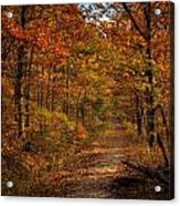 Fall At Center Point Trailhead Acrylic Print