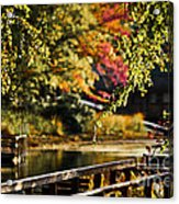 Fall At Tyler State Park Acrylic Print