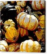 Fall Bounty Acrylic Print