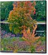 Fall By The River 7 Acrylic Print