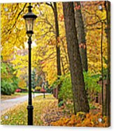 Fall Color And Lamppost Acrylic Print