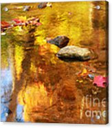 Fall Color In Stream Acrylic Print