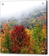 Fall Color Panoramic Acrylic Print