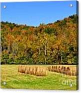 Fall Color Randolph County West Virginia Acrylic Print