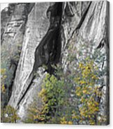 Fall Colors Chimney Rock State Park Acrylic Print