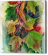 Fall Colors Acrylic Print by John Smeulders