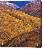 Fall Colours Along Top Of The World Acrylic Print