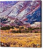Fall Colours In Ogilvie Mountains Acrylic Print