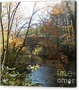 Fall Delight 2 Acrylic Print