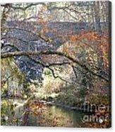 Fall Delight 3 Acrylic Print