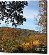 Fall Delight 9 Acrylic Print