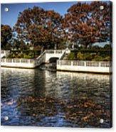 Fall Falling Acrylic Print