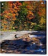 Fall Falls Acrylic Print