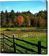 Fall Field - Greeting Card Acrylic Print