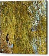 Fall Fisherman Acrylic Print