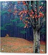 Fall Fog Acrylic Print