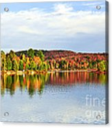 Fall Forest Reflections Acrylic Print