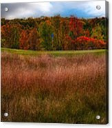 Fall Golf Acrylic Print