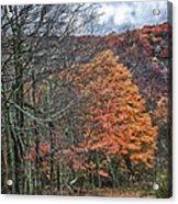 Fall Hiking Near Mountain Lake Acrylic Print