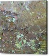 Fall Impressions Acrylic Print