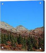 Fall In Denali Acrylic Print