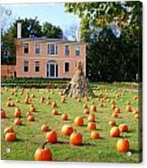 Fall In Maine Acrylic Print