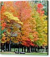 Fall In Michigan Acrylic Print by Optical Playground By MP Ray