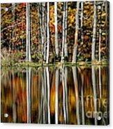 Fall In New York Acrylic Print